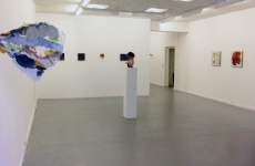 HE WHO MAKES BEAST OF HIMSELF_______installation view / 2011 / Charlotte Moser Gallery Geneva Switzerland
